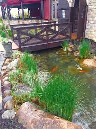 heavy duty pond clean out c e pontz sons landscape contractors