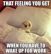 Get Back To Work Meme - image result for thursday work meme haha pinterest meme and memes