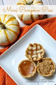 best 25 mini pumpkin pies ideas on pumpkin pies mini