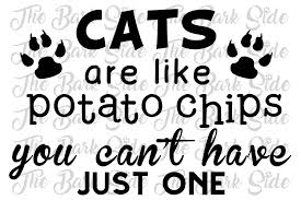 12x24 vinyl decal only cats are like potato chips wall decor pet