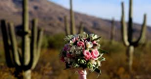 wedding venues in tucson tucson wedding guide venues tucson