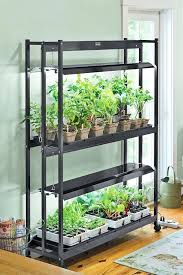 grow lights for indoor herb garden grow lights indoor garden indoor plant grow lights plant lights home