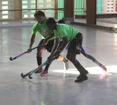 Joyann King Champs Takes 2016 Paradise Hockey Development Title