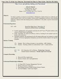 Build Your Resume Online Free by Curriculum Vitae Build A Resume In 15 Minutes Sample Resume For