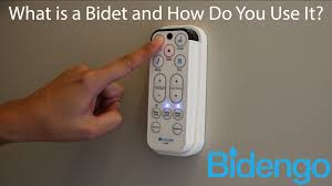 Bidet Define What Is A Bidet And How Do You Use It Youtube