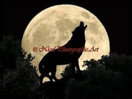 wolf howling moon black green forrest home decor