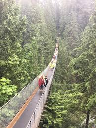 Treetop Canopy Tours by Capilano Suspension Bridge U0026 Grouse Mountain Private Tour