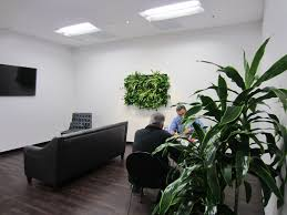 doors garden design exciting best indoor green wall plants make