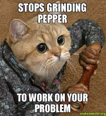 Grinding Meme - stops grinding pepper to work on your problem make a meme