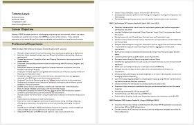 obiee sample resume obiee architect sample resume bank clerk