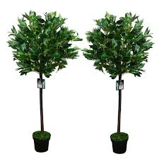Indoor Trees For The Home by Artificial Decorative Trees For The Home Pair Of 2 4ft Artificial