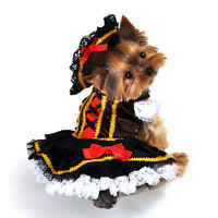 Yorkie Halloween Costume 10 Pet Costumes Halloween Hound U2013 Trendeezy