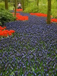Beautiful Garden Images Hort Blog Beautiful Gardens Near And Far