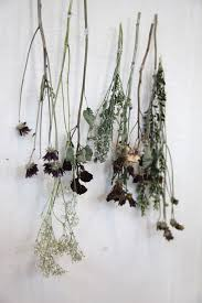 dried flowers diy decor how to use dried flowers