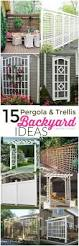 backyards mesmerizing create privacy in backyard backyard images
