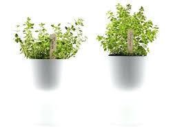 diy self watering herb garden self watering planters self watering pots home depot denniswoo me