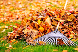 how many calories does raking leaves burn livestrong com