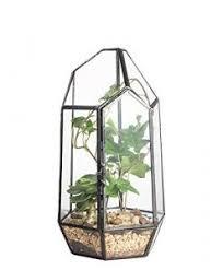 clear hanging glass crystal flower vase plant terrarium container