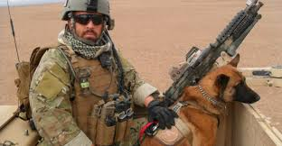 belgian malinois in movies the fight to allow military working dogs to u0027retire u0027 on u s soil