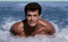 David Hasselhoff Meme - david hasselhoff gif find share on giphy