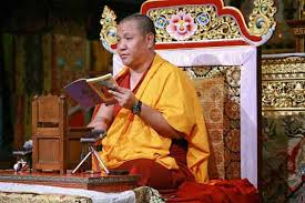 palpung web center his eminence sangye nyenpa rinpoche completed