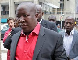 malema sequestration postponed to 2015