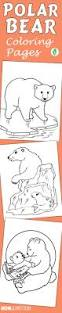 10 free printable polar bear coloring pages polar bear