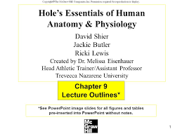 Essentials Of Human Anatomy And Physiology Notes 1 Copyright The Mcgraw Hill Companies Inc Permission Required