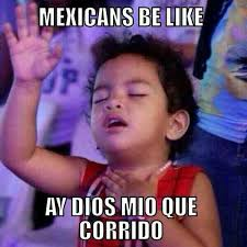 Mexican Memes Tumblr - most mexicans be like humming bird
