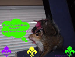 happy halloween funny picture happy halloween from me and my pet squirrel www paintingsquirrel