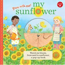 Sunflower House Amazoncouk Eve Bunting 9780152004835 Books