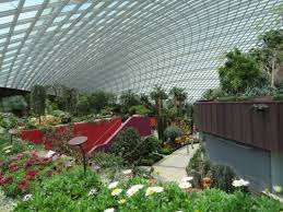 flower dome and cloud forest indoor display buildings picture of