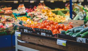 food manufacturing companies in ontario to enhance sustainability
