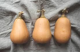 comment cuisiner les butternuts légumes d automne qu est ce que le butternut madmoizelle