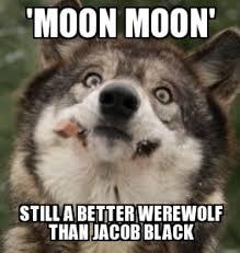Moon Moon Meme - moon moon meme procrasturbation to waste time pleasuring oneself