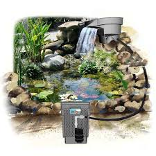 backyard pond pumps backyard ponds ideas walsall home and