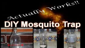 diy mosquito trap that works youtube