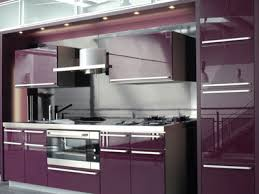 purple cabinets kitchen modern kitchen color trends 2011