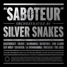 silver photo album silver snakes