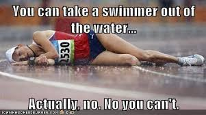 Competitive Swimming Memes - is swimming a sport uh you try kick sets 55 things competitive