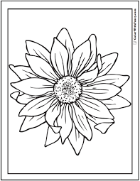 Sunflower Coloring Page 14 Pdf Printables Sunflower Coloring Page