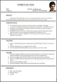 resume cv format curriculum vitae exle from resume cv format curriculum vitae