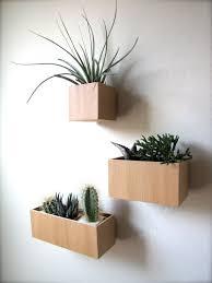 valuable design ideas hanging wall planter impressive 1000 ideas