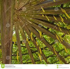 garden trellis stock photos image 34528273