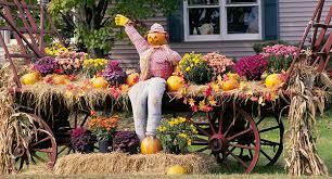 Straw Cornstalks & Pumpkins oh my