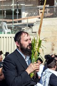 prayers for sukkot sukkot and the protective covering of god messianic bible