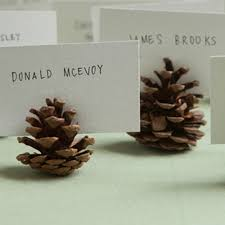 creative and crafty place card ideas place cards pine cone and