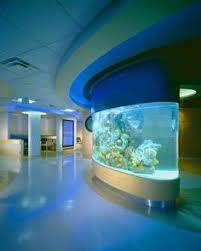 Okeanos Aquascaping 31 Aquariums From Wow To Pics Aquariums Fish Tanks And Fish