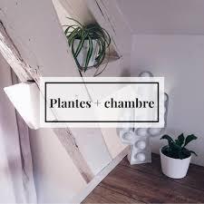 plantes dans une chambre les plantes dans la chambre oui ou non littlenavire