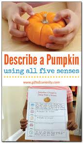 describe a pumpkin using all five senses fall science free